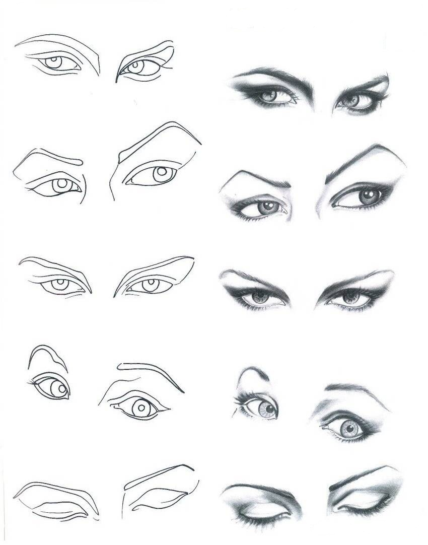 Cartoon Character Design Eyes : Biblioteca da costura croqui desenhando olhos